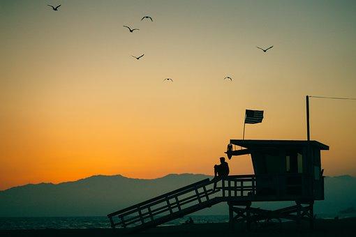 Birds, Flying, Animal, Sky, Sunset, Sunrise, Mountain