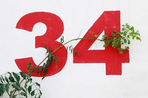 White, Wall, Numbers, Branch, Leaves