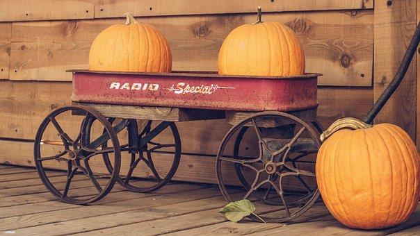 Wood, Wall, Wheel, Cart, Orange, Squash, Pumpkin