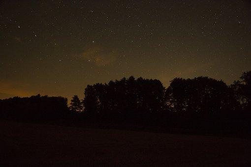 Night Sky, The Sky, Night, Space, Dark, Tree