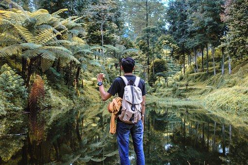 People, Man, Adventure, Outdoor, Alone, Green, Grass