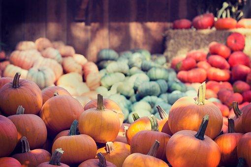 Halloween, Pumpkins, Orange, Green, Red, Colorful