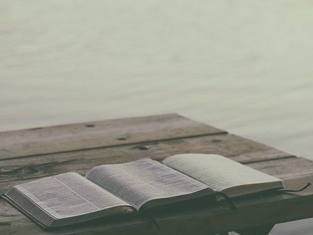 Book, Bible, Reading