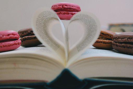 Book, Read, Study, Cookie, Macaroon, Sweets, Pastry