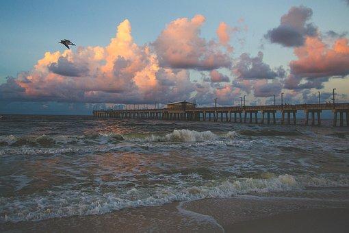 Pier, Shore, Coast, Coastline, Bird, Seagull, Waves