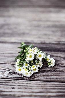 Flowers, Nature, Blossoms, Stems, Stalks, Bouquet