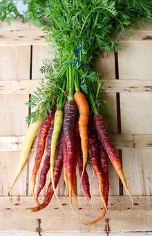 Carrots, Veg, Vegetables, Colour, Summer, Bright, Green