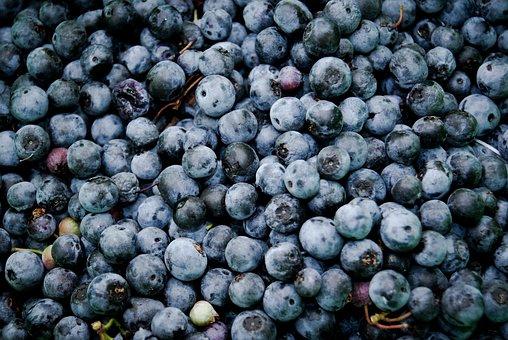 Blueberries, Fruits, Food
