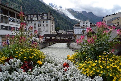 Chamonix, Flowers, France, Snow, Rio, Serra, Glacier
