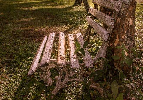 Bank, Rest, Tranquility, Farm, Landscape, Nature