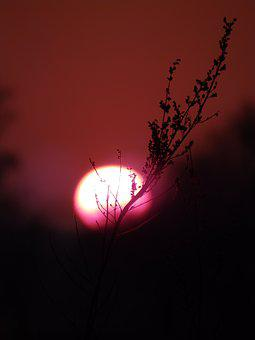 Sunset, Blood, Night, The Flame