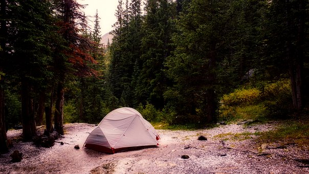 Colorado, Tent, Camping, Landscape, Forest, Trees