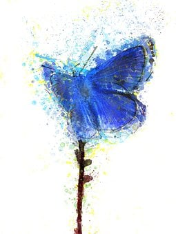 Butterfly, Blue, Insect, Watercolor, Nature, Design