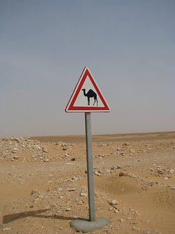 Attention, Camel, Note, Shield, Desert, Directory