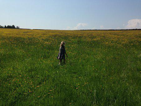 Girl, Child, Kid, Childhood, Summer, Field, Freedom