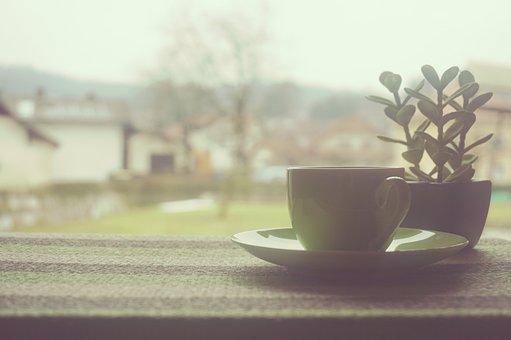 Coffee, Cup, Tea, Window, Home, Office, Business, Work
