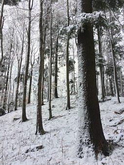 Mountain, Medvednica, Croatia, Sljeme, Europe, Zagreb