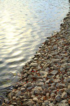 Shore, Pebble, Rock, Lake, Beach, Nature, Water, Coast