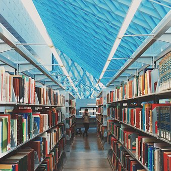 Books, Library, School, Education, Learning, Study