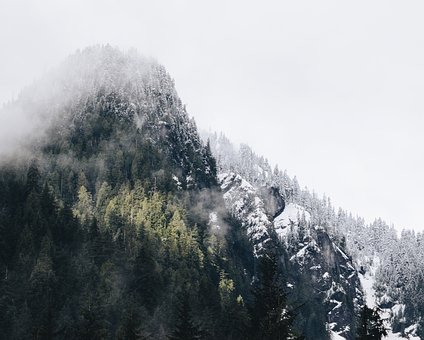 Mountains, Hills, Snow, Cold, Winter, Trees, Forest