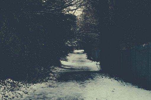 Path, Sidewalk, Snow, Winter, Trees