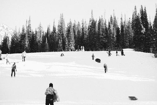 Winter, Snow, Ice, Cold, People, Skating, Toboggan