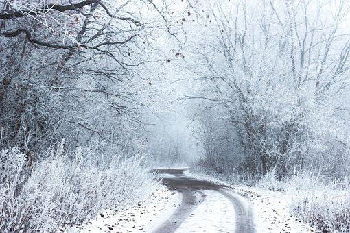 Snow, Winter, Cold, Road, Rural, Countryside, Trees