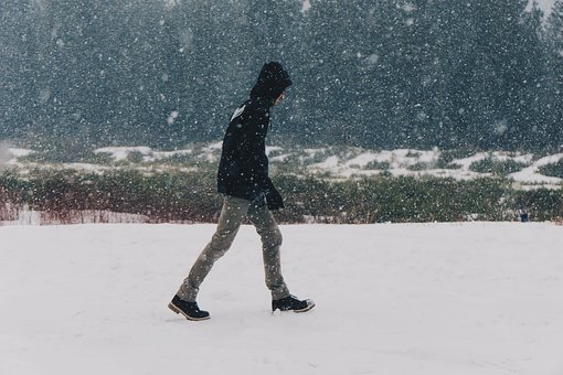 Snow, Blizzard, Winter, Cold, Walking, Guy, Man, People