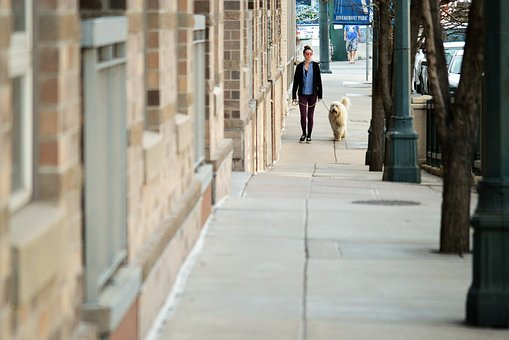 Woman, Girl, Young, Adult, Female, Walking, Dog, Stroll