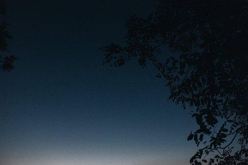 Dusk, Sky, Dark, Night, Evening, Trees, Silhouette