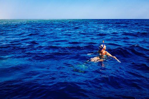 Ocean, Sea, Water, Horizon, Sunshine, Summer, Vacation