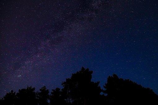 Stars, Sky, Night, Galaxy, Dark, Trees, Silhouette