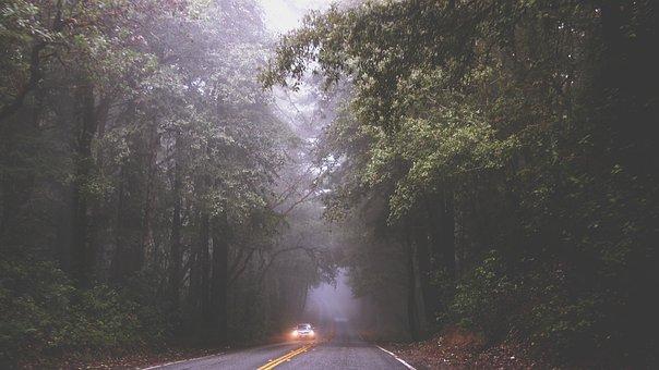 Road, Fog, Mist, Car, Driving, Headlights, Pavement