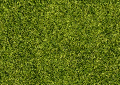 Background, Grass, Rush, Pattern, Structure, Meadow