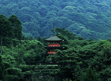 Pagoda, Japan, Forest, Asia