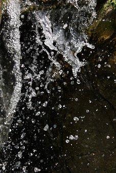 Water, Splash, Drop, Bubble, Water Drop, Wet, Rain