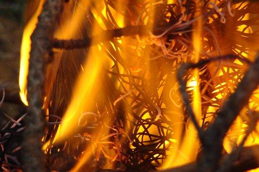 Fire, Koster, Heat, Bonfire, Tourism, Coals, Flame