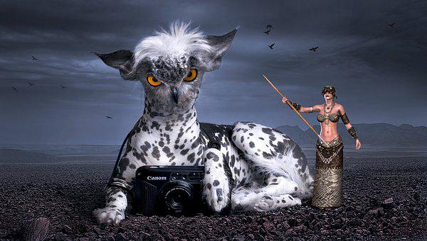 Fantasy, Mythical Creatures, Dog, Owl, Fairy Tale