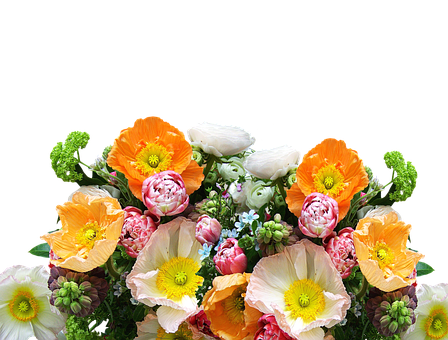 Bouquet Of Flowers, Cut Flowers, Flowers, Blossom