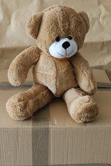 Bear, Teddy, Soft Toy, Cute, Fur, Childhood, Fluffy