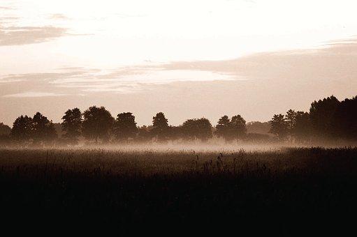 Fog, Abendstimmung, Evening, Landscape, Nature, Mood