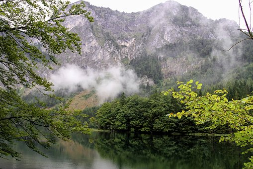 Lake, Mountain, Water, Nature, Fog, Rain, Green, Tree