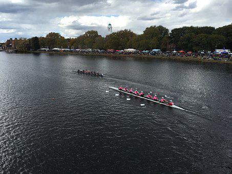 Regatta, Rowing, Race, Boat, Row, Competition, Sport