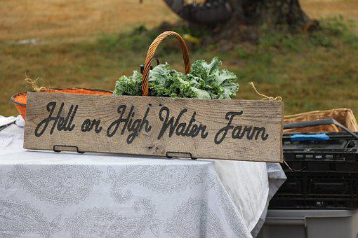 Sign, Hell Or High Water Farm, Country, Wood, Vintage