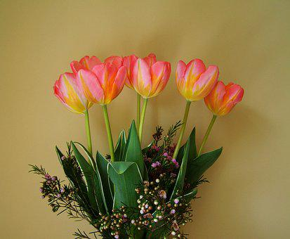 Tulip Bouquet, Yellow-pink Flowers, Cut Flowers