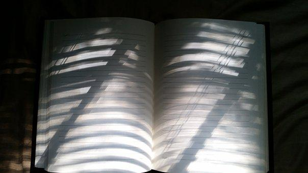 Notebook, Lined, Lines, Sunlight, Paper, Background