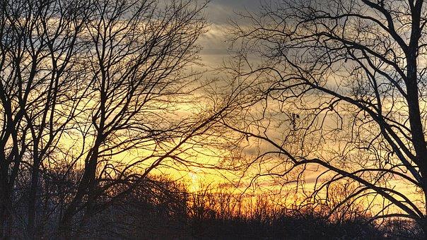 Sunset, Scenery, Trees, Artistic, Art Print