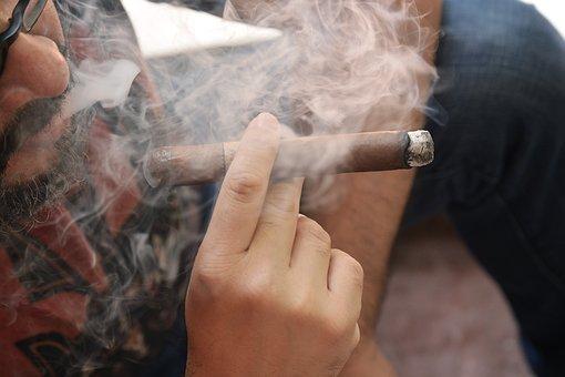 Tobacco, Cigar, Pure, Leaf, Smoke, Smoker, Smoking