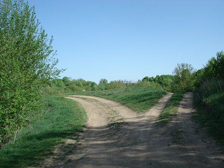 Roads, Split, Fork, Divided, Dirt, Decision, Farm Track