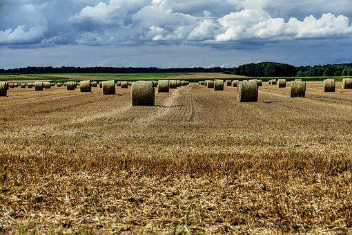 Straw Bales, Arable, Field, Agriculture, Clouds